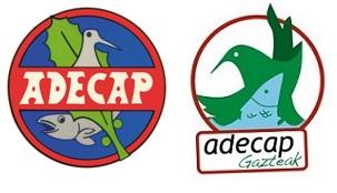 ADECAP