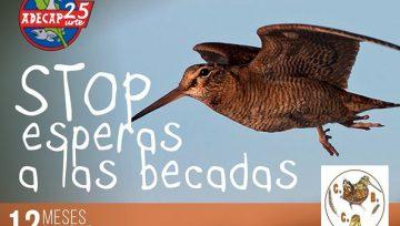 """CALENDARIO BENÉFICO ADECAP – Noviembre: """"STOP esperas a las becadas"""""""