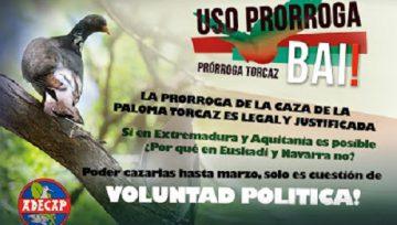 """A instancia de ADECAP, la ONC propone en la Mesa Sectorial de la Caza convocada por el Ministerio de Agricultura, la autorización de la """"Prorroga de la paloma torcaz"""""""