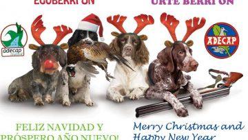 Feliz navidad y próspero 2019 - Gabon zoriontsuak eta urte berri on - Merry Christmas and a happy new year